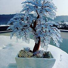 Dekorácie - Ľadový bonsaj - 10359675_