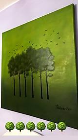 Obrazy - Zelené stromy - 10365916_