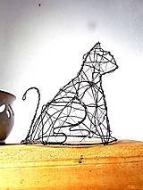 mačka domáca (priestorová:)