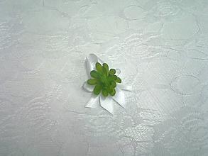 Pierka - biele svadobné pierko pre hostí so sukulentom - 10371183_