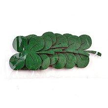Textil - Filcová ozdoba, sada 6 ks, štvorlístok - 10382497_
