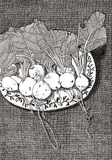 Kresby - Reďkovky - reprodukcia - 10384114_