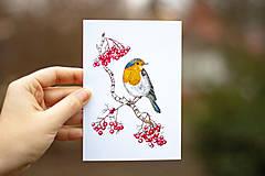Papiernictvo - Červenka s jeřabinami - pohlednice - 10391184_