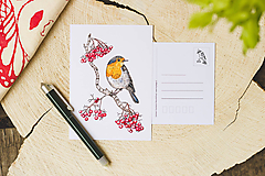 Papiernictvo - Červenka s jeřabinami - sada pohlednic, 4 ks - 10391217_