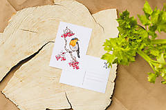 Papiernictvo - Červenka s jeřabinami - sada pohlednic, 4 ks - 10391219_
