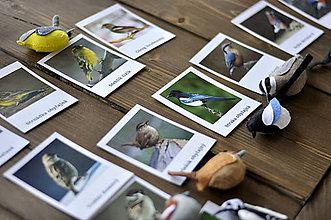 Hračky - Vtáky na kŕmidle Trojzložkové karty - 10390916_