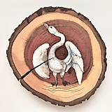 Obrazy - Biela labuť - 10389659_