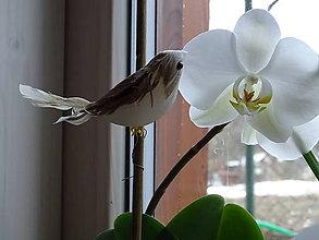 Polotovary - Vtáčik na dekoráciu - 10395696_