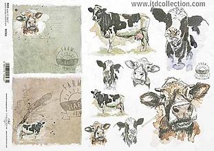 Papier - ryžový papier ITD 1561 - 10406918_