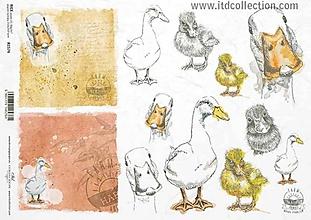 Papier - ryžový papier ITD 1574 - 10407055_