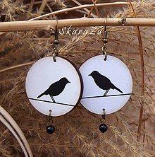Náušnice - Vtáčiky - 10413518_