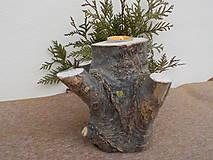 Svietidlá a sviečky - Svietnik - strom - 10424281_