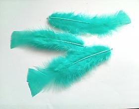 Suroviny - Morčacie perie-10ks v balení - 10427255_
