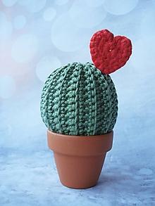 Darčeky pre svadobčanov - Kaktus od srdca - 10433346_