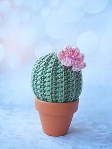 Drobnosti - Som nežný kaktus!!! - 10434898_