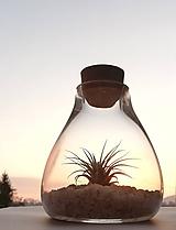 Nádoby - Mini záhradka v skle - 10434579_