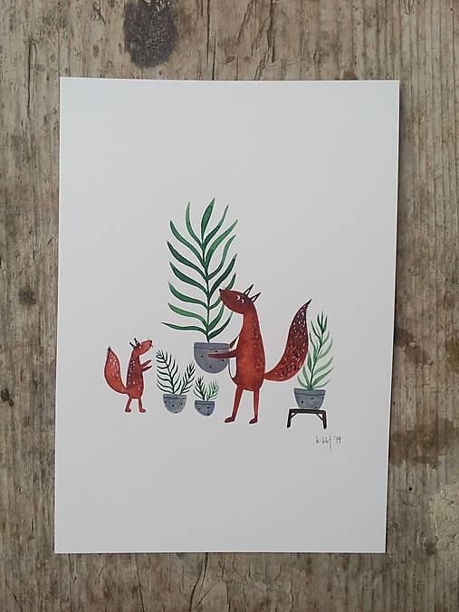 Veveričky a palmy ilustrácia / originál maľba