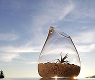 Nádoby - Mini záhradka v skle - 10440500_