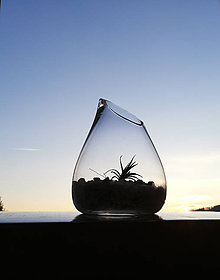 Nádoby - Mini záhradka v skle - 10440495_