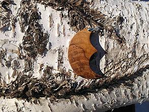 Náhrdelníky - prívesok mesiac - 10446361_