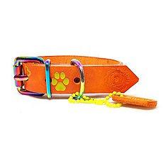 Pre zvieratká - Oranžový kožený obojok s labkami a kostičkami - 10450988_