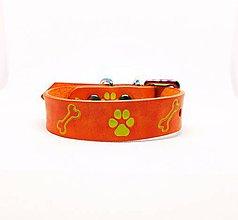 Pre zvieratká - Oranžový kožený obojok s labkami a kostičkami - 10450991_