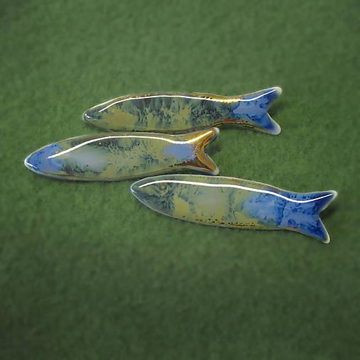 Dunajské rybky.