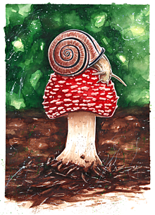 Obrazy - Na Muchotrávke - akvarelová maľba, originál - 10453963_