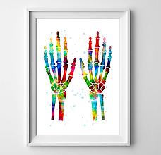 Grafika - Anatómia ľudských rúk - 10457688_