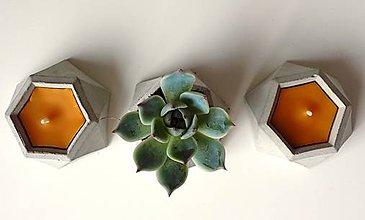 Nádoby - Včelia sviečka - v betónovom kvetináči (2v1) - 10464037_