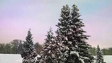 Fotografie - Zimná rozprávka - 10463603_