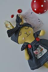 Hračky - Zajka bodkovana - 10466101_