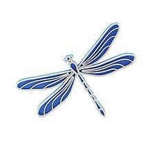 Odznaky/Brošne - Vážka nobble blue/silver - 10478106_