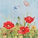 - kvety 49 - 10480245_