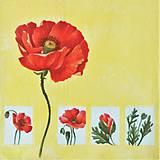 Papier - kvety 121 - 10480315_