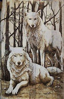 Obrazy - Vlci v lese - 10480869_