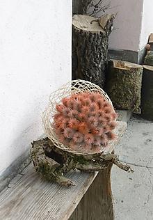 Dekorácie - Kytica z bodliakov s odtieňom pomarančovej - 10485201_