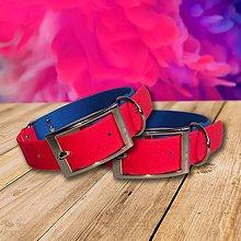 Pre zvieratká - Vodeodolný ružovomodrý obojok PINK&BLUE - 10484012_