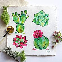 Kresby - Kaktusy - 10488059_