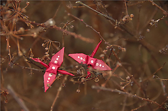 Náušnice - Hvězdy v zimě - 10490779_