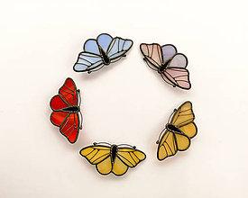 Odznaky/Brošne - Motýlia brošňa - 10494584_