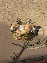 Dekorácie - Hniezdo s vtáčikmi - 10498376_
