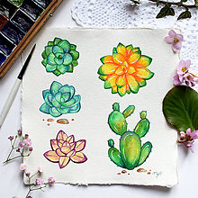 Kresby - Kaktusy, sukulenty - 10498556_