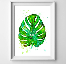 Grafika - Monstera - 10497878_
