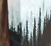 """Obrazy - Obraz """"Skryté v hmle"""" - 10498301_"""
