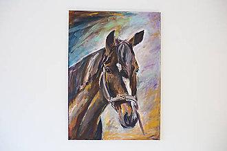 Obrazy - Obraz: Kôň - 10503112_