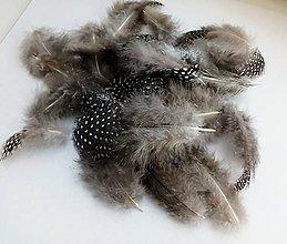 Iný materiál - Dekoračné perie ( 20 ks) - 10505383_