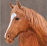 Papier - kôň - 10504494_