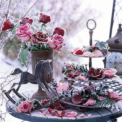 ľadové ruže