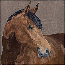 Papier - kôň - 10504408_